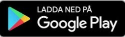GooglePlay copy